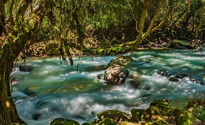 Picture of Penas Blancas River Quizarra Costa Rica
