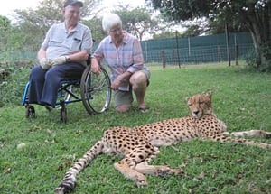 Traveling with a disability is tough, but Travel-for-All can help. Here is a picture of a couple, one using a wheelchair, admiring a jaguar in a wildlife park