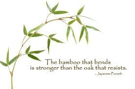 """A decorative image with the words """"The bamboo that bends is stronger than the oak that resists. Japanese proverb"""